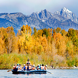 jackson hole wildlife watching on the snake river