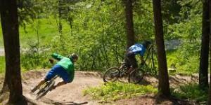 jackson hole bike rides
